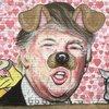 Graffiti Asshole