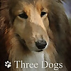 Three Dogs in a Garden By Jennifer Connell