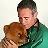 Dog Cancer Blog