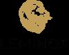 Leminox | Hair Loss Blog