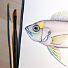 Life Science Studios - Sketchblog
