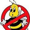 Bee Busters | Beekeeping & Bee removal Blog