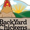 Backyard Chickens