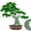 Growing Bonsai | Your guide towards growing miniature trees