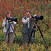 Barger Nature Photography Blog