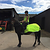 Jemma Equestrian