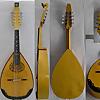 ioannis skoulas mandolin