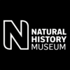 Blogs from the Natural History Museum | Entomology