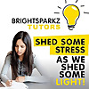 BrightSparkz Tutors Blog