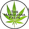 The Marijuana Facts | Cannabis Enthusiasts | Bloggers | Cannabis Educators