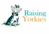 Raising Yorkies Blog