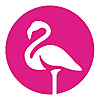 Flamingo   Vape Shop