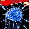 Briddles - Best Brain Teasers