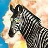 Sneaky Zebra | Youtube