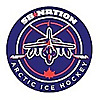 Arctic Ice Hockey | For Winnipeg Jets Fans