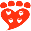 Companion Animal Psychology by Zazie Todd