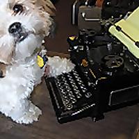 Life in a Typewriter Shop