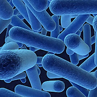 The RMM Blog - Rapid Microbiology and Rapid Microbiological Methods