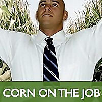 Corn on the Job - Wisdom for Job Seekers