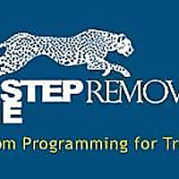 Algorithmic and Mechanical Forex Strategies | OneStepRemoved