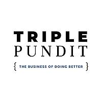 Triple Pundit   Shareholder Activism
