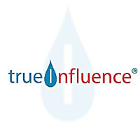 True Influence | B2B Marketers Blog