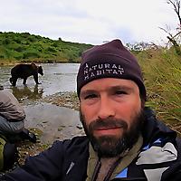 Alaska Bears & Wolves