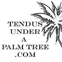 Tendus Under A Palm Tree | Conversations on Dance