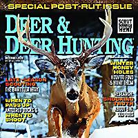 Deer & Deer Hunting | Whitetail Deer Hunting Tips