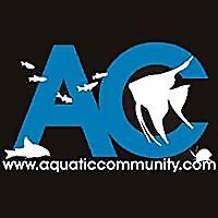 Aquatic Community | Aquarium Forum