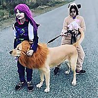 Go Team Kate - Blog
