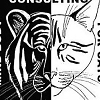 Little Big Cat | Mind-Body Consulting for Cats
