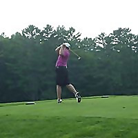 Tiger Golf Traveler