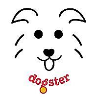Dogster | Pet Owner & Lover Blog