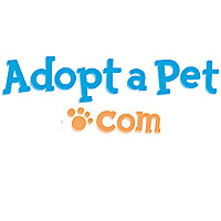AdoptaPet.com | Non-Profit Pet Adoption Blog