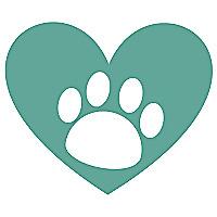 Puppy Leaks - Blog