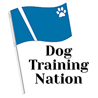 Dog Training Nation