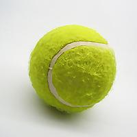 Tennis Abides