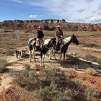 Camping & Horses