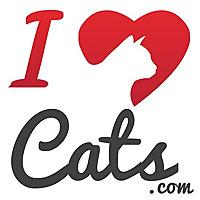 iHeartCats.com All Cats Matter ™
