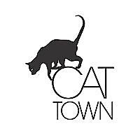Cat Town - Blog