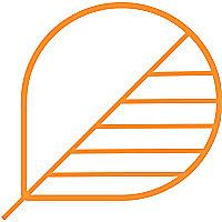 Bodhik Blog