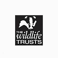 Gwent Wildlife Trust blogs