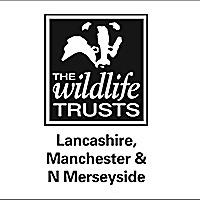 Lancashire Wildlife Blogs