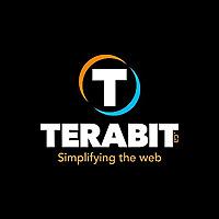 Terabit Web Development Blog