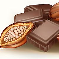Little Bites of Cocoa