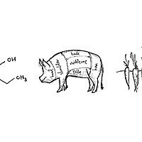 Science & Food blog