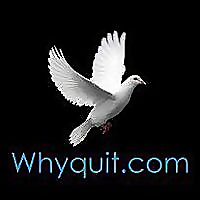 Why Quit | Youtube