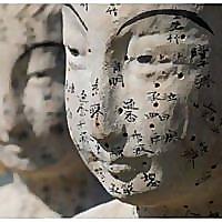 Healing Lotus Acupuncture