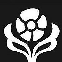 Naturopathic Foundations
